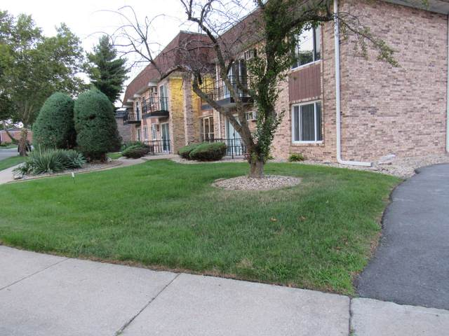 18217 Hart Drive 1A, Homewood, IL 60430 (MLS #11205863) :: Littlefield Group