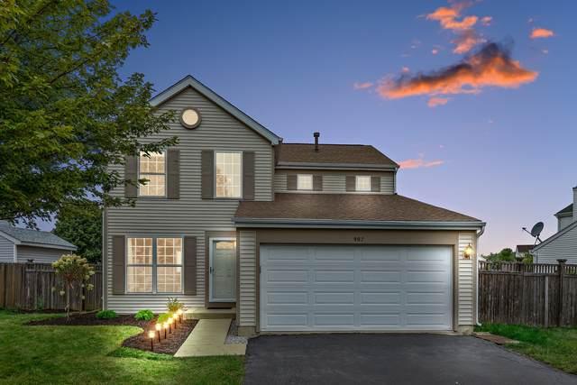 907 Mission Boulevard, Joliet, IL 60436 (MLS #11206223) :: John Lyons Real Estate