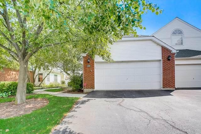 119 Hemstead Street, Lake Bluff, IL 60044 (MLS #11206365) :: Littlefield Group