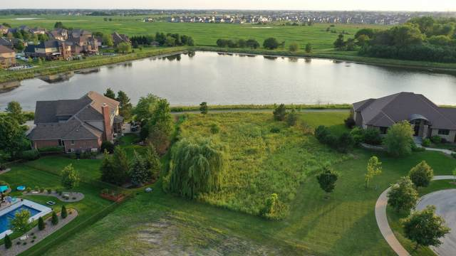 11881 Leigh Court, Frankfort, IL 60423 (MLS #11207395) :: John Lyons Real Estate