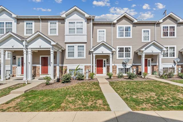 86 W Big Horn Drive, Hainesville, IL 60073 (MLS #11207614) :: Littlefield Group