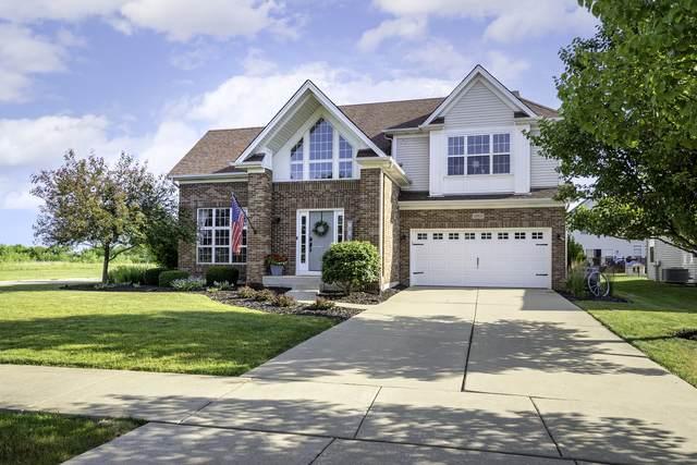 26621 W Red Apple Road, Plainfield, IL 60585 (MLS #11207638) :: Littlefield Group