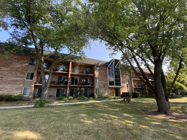 520 Burning Tree Lane #105, Naperville, IL 60563 (MLS #11208264) :: John Lyons Real Estate