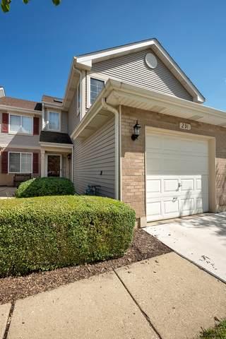231 Sierra Pass Drive #2, Schaumburg, IL 60194 (MLS #11208265) :: John Lyons Real Estate