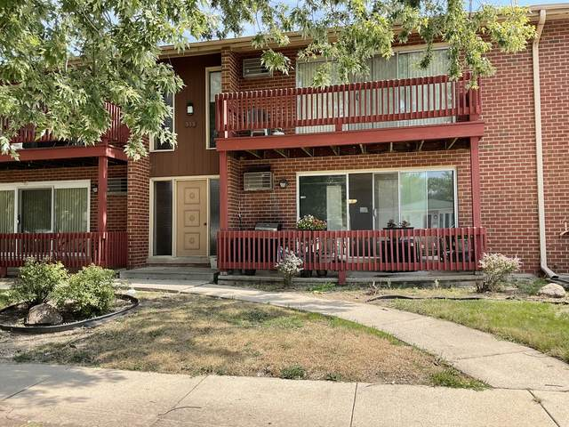 555 N Carroll Parkway 1E, Glenwood, IL 60425 (MLS #11208314) :: The Wexler Group at Keller Williams Preferred Realty