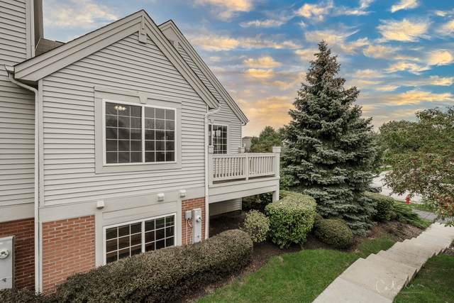 1524 New Haven Drive #1315, Cary, IL 60013 (MLS #11208398) :: Littlefield Group