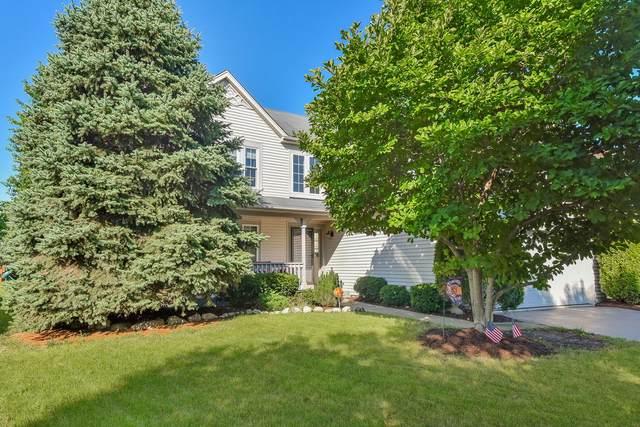 1719 Hidden Oaks Court, Plainfield, IL 60586 (MLS #11208482) :: Littlefield Group