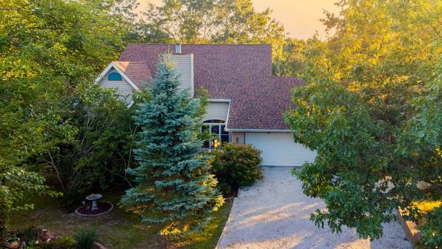 865 Buffalo Run, Danvers, IL 61732 (MLS #11208628) :: Jacqui Miller Homes