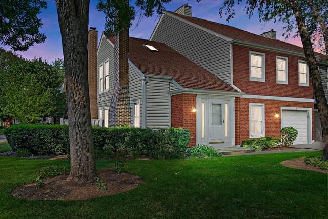 95 S Stonington Drive, Palatine, IL 60074 (MLS #11208905) :: Littlefield Group