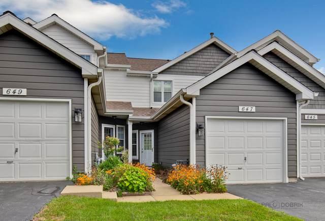 647 Woodhaven Drive, Mundelein, IL 60060 (MLS #11209259) :: John Lyons Real Estate