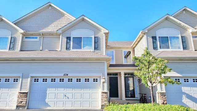 534 S Jade Lane, Round Lake, IL 60073 (MLS #11209330) :: John Lyons Real Estate
