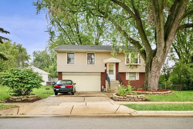 717 Hudson Avenue, Romeoville, IL 60446 (MLS #11210135) :: Littlefield Group