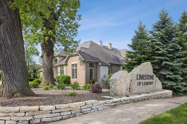 1001 Stacia Lane, Lemont, IL 60439 (MLS #11210292) :: Littlefield Group