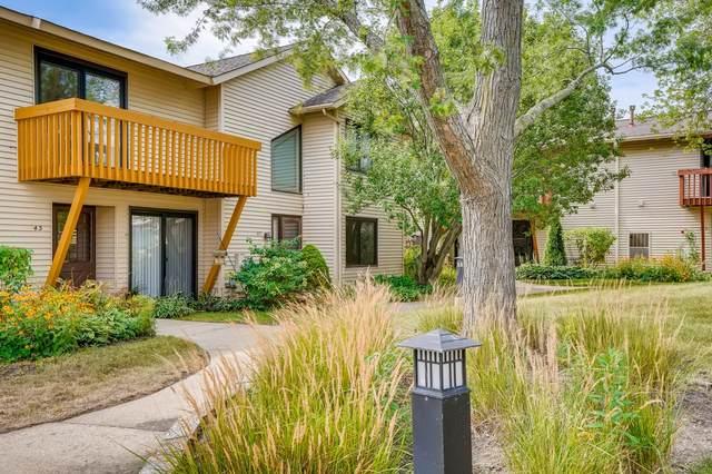 43 Constitution Court, Vernon Hills, IL 60061 (MLS #11211024) :: John Lyons Real Estate