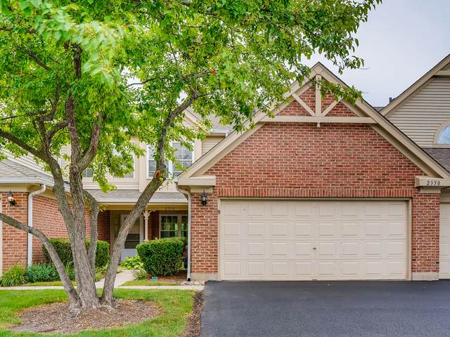 2350 County Farm Lane, Schaumburg, IL 60194 (MLS #11211101) :: The Wexler Group at Keller Williams Preferred Realty