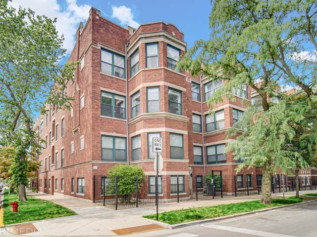 4558 S King Drive #7, Chicago, IL 60653 (MLS #11211458) :: Ani Real Estate