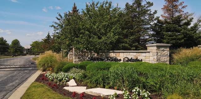 117 Forest Edge Drive, Palos Park, IL 60464 (MLS #11211481) :: The Wexler Group at Keller Williams Preferred Realty