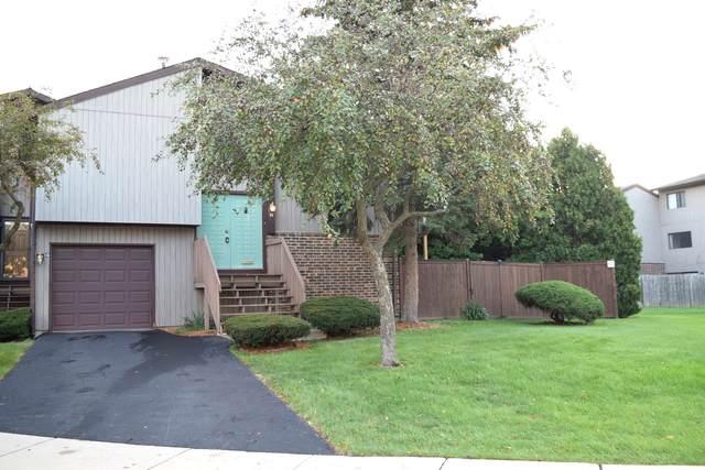 56 Salt Creek Road A, Roselle, IL 60172 (MLS #11212105) :: Littlefield Group