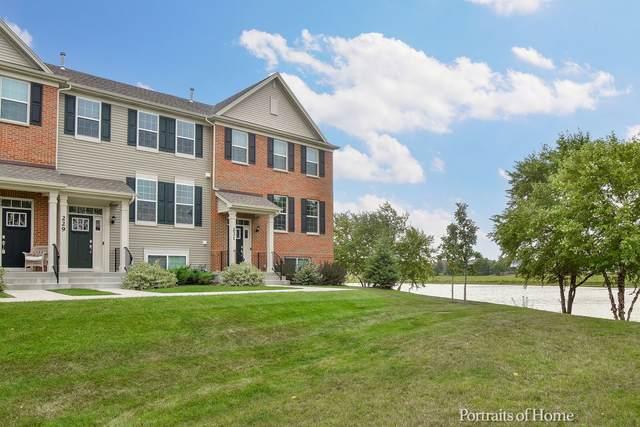 229 Lakeshore Drive, Oswego, IL 60543 (MLS #11213347) :: John Lyons Real Estate