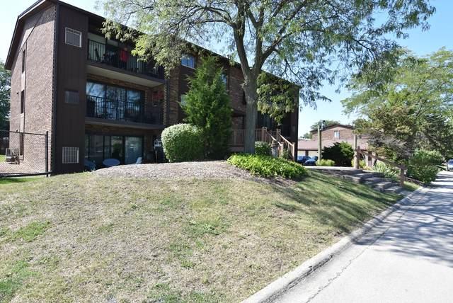 47 Piers Drive W #201, Westmont, IL 60559 (MLS #11213356) :: Ryan Dallas Real Estate