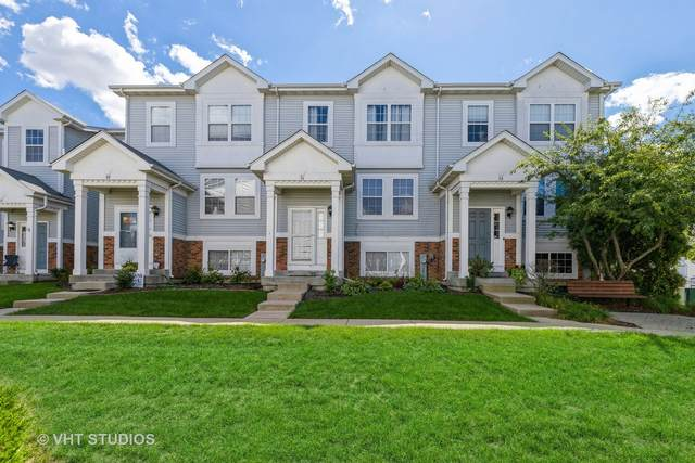 51 W Big Horn Drive #51, Hainesville, IL 60073 (MLS #11213708) :: Littlefield Group