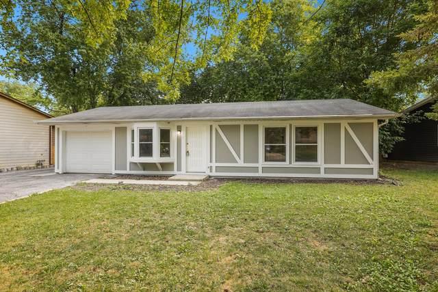 176 Plainview Drive, Bolingbrook, IL 60440 (MLS #11214012) :: Ryan Dallas Real Estate