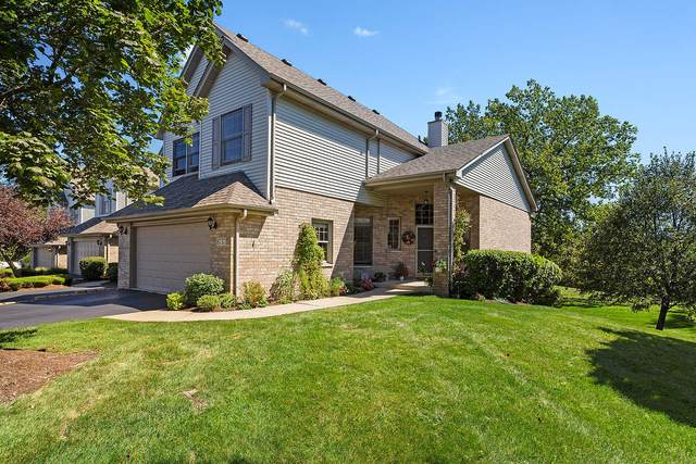 8737 Golden Rose Drive, Orland Park, IL 60462 (MLS #11214016) :: Littlefield Group