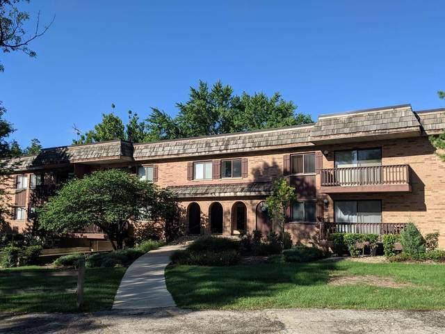 8100 Woodglen Lane #101, Downers Grove, IL 60516 (MLS #11214192) :: John Lyons Real Estate