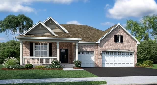 3584 Emerald Road, Elgin, IL 60124 (MLS #11214487) :: John Lyons Real Estate