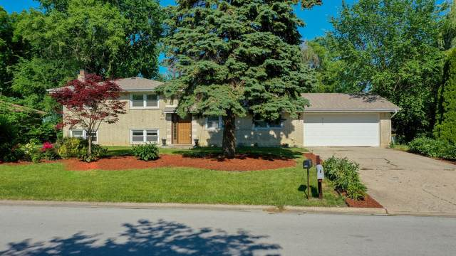 9125 S 87th Avenue, Hickory Hills, IL 60457 (MLS #11214659) :: The Wexler Group at Keller Williams Preferred Realty