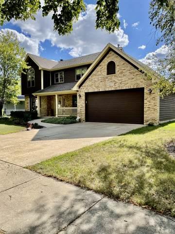 217 Stonemill Lane, Oswego, IL 60543 (MLS #11214760) :: Carolyn and Hillary Homes