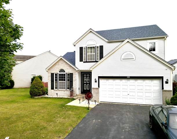 250 Lilac Drive, Romeoville, IL 60446 (MLS #11214957) :: Suburban Life Realty