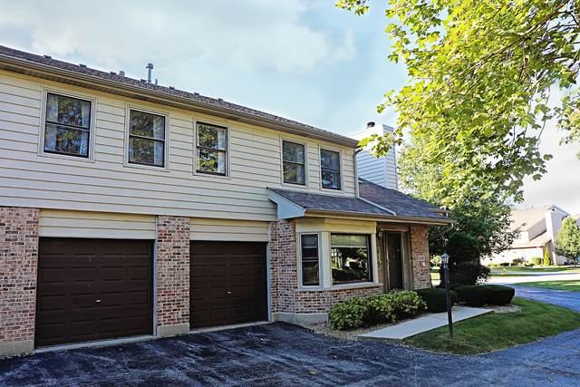 9218 Wherry Lane, Orland Park, IL 60462 (MLS #11215355) :: John Lyons Real Estate