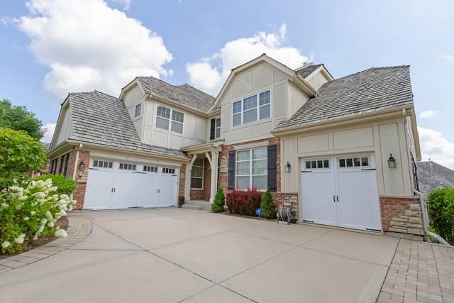 1055 Moray Drive, Inverness, IL 60010 (MLS #11215358) :: John Lyons Real Estate