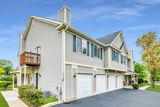 319 Windsor Court D, South Elgin, IL 60177 (MLS #11215741) :: John Lyons Real Estate