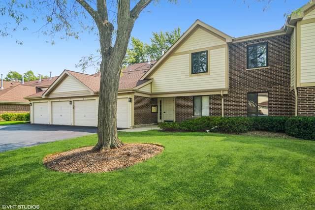847 E Coach Road #4, Palatine, IL 60074 (MLS #11215788) :: John Lyons Real Estate