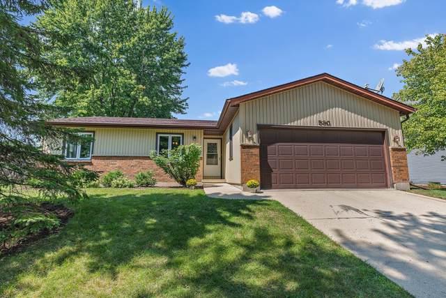 530 N Airlite Street, Elgin, IL 60123 (MLS #11216115) :: John Lyons Real Estate
