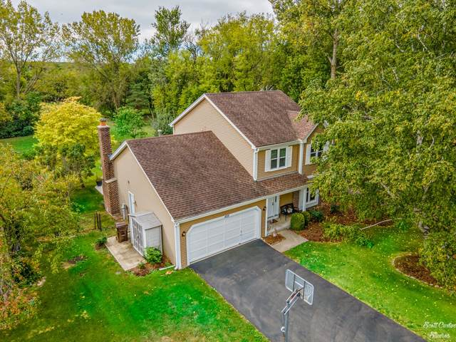 425 Asbury Avenue, Fox River Grove, IL 60021 (MLS #11216122) :: John Lyons Real Estate