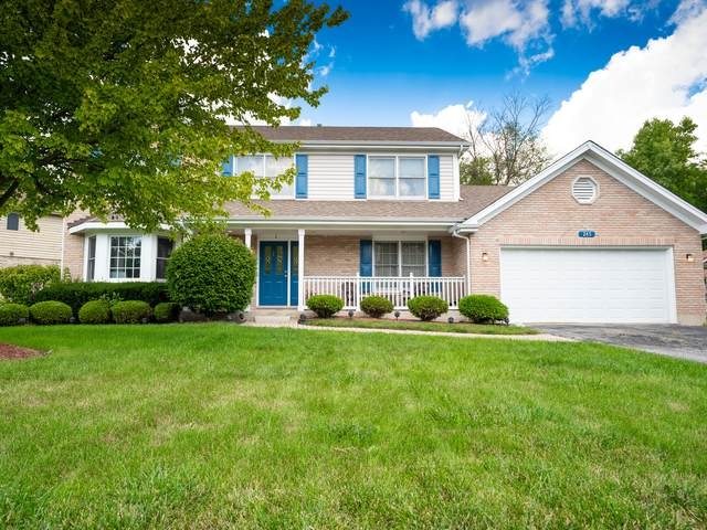 245 Cove Drive, Flossmoor, IL 60422 (MLS #11216262) :: The Wexler Group at Keller Williams Preferred Realty