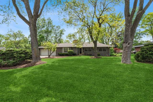 540 Crest Avenue, Elk Grove Village, IL 60007 (MLS #11216315) :: Rossi and Taylor Realty Group