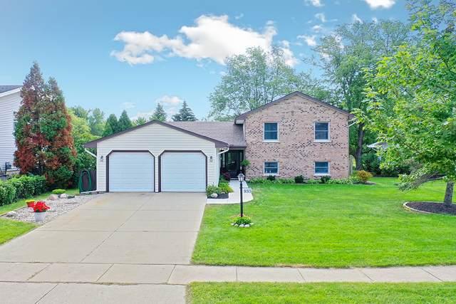935 Rosedale Lane, Hoffman Estates, IL 60169 (MLS #11216362) :: Suburban Life Realty