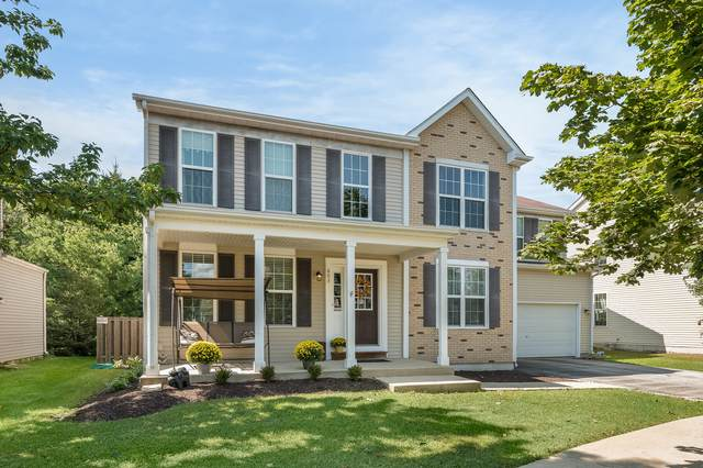 603 Roosevelt Drive, Oswego, IL 60543 (MLS #11216551) :: Carolyn and Hillary Homes