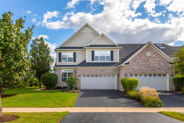 26521 Countryside Lane, Plainfield, IL 60585 (MLS #11216596) :: Littlefield Group