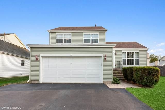461 Monarch Lane, Bolingbrook, IL 60440 (MLS #11216760) :: Angela Walker Homes Real Estate Group