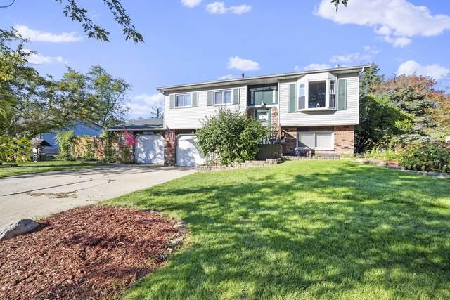 161 Olympic Drive, Bolingbrook, IL 60440 (MLS #11216855) :: RE/MAX IMPACT