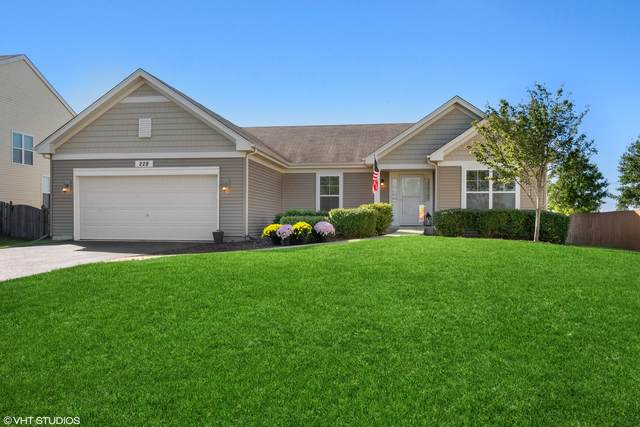 228 Wilkins Road, Sycamore, IL 60178 (MLS #11216902) :: Touchstone Group