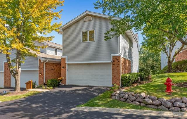 251 Charlotte Court #251, Cary, IL 60013 (MLS #11217404) :: Lewke Partners - Keller Williams Success Realty