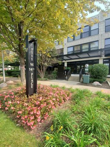 1111 W 14th Place #218, Chicago, IL 60608 (MLS #11217929) :: The Wexler Group at Keller Williams Preferred Realty