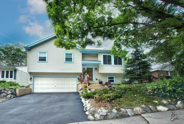 36 Forest Avenue, Fox Lake, IL 60020 (MLS #11218572) :: Rossi and Taylor Realty Group