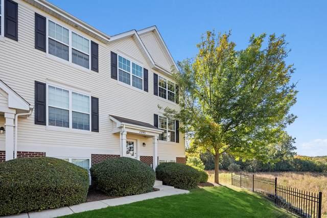 1593 W Turtle Creek Lane, Round Lake, IL 60073 (MLS #11219010) :: John Lyons Real Estate